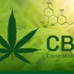 Getting Started With CBD Treatment
