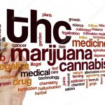 Cannabis: the problem with defining products around THC content