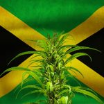 Brand Jamaica Is Here and It's Heading To Canada!