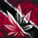 Trinidad and Tobago Still Stalling