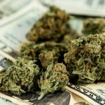How Much Do Average Users Spend On Marijuana?