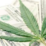 Federal Reserve Bank Highlights Economic Potential And Health Impacts Of Marijuana Legalization