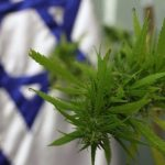 Israel approves medical cannabis exports
