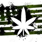 U.S. House Votes to Legalize Cannabis Federally