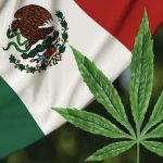 Mexico publishes medicinal cannabis regulation, step toward world's largest legal market