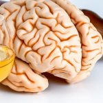 Twin Study: Alcohol Use, But Not Cannabis Use, During Young Adulthood Linked with Reductions in Cortical Thickness