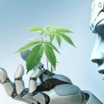 HOW ARTIFICIAL INTELLIGENCE IS TRANSFORMING THE CANNABIS INDUSTRY